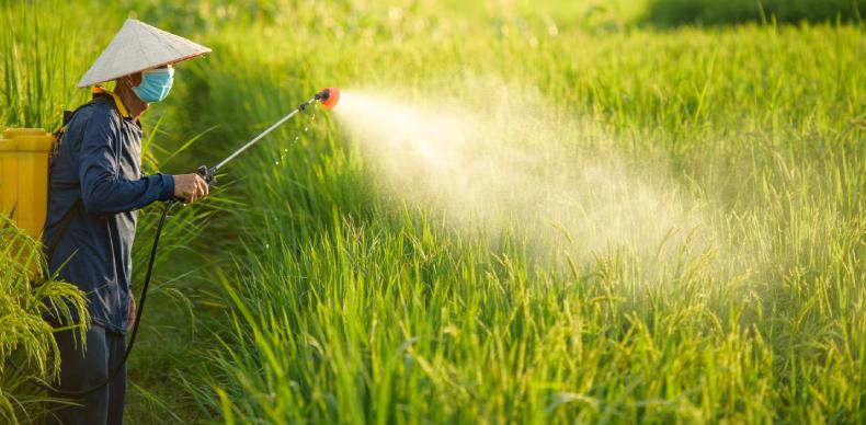 画像に alt 属性が指定されていません。ファイル名: asian-farmers-spray-herbicides-on-field-1.jpg